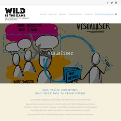 facilitation graphique - visualisation de la complexitéWild is the Game