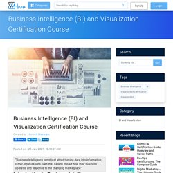 Business Intelligence (BI) and Visualization Certification Course