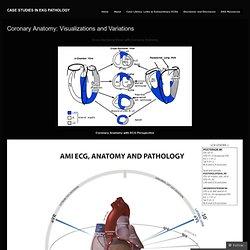 Coronary Anatomy: Visualizations and Variations « Case Studies in EKG Pathology