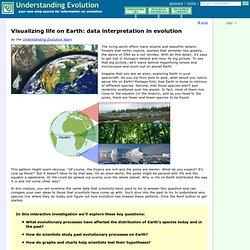 Visualizing life on Earth: data interpretation in evolution
