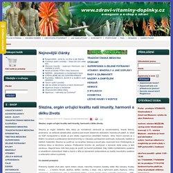 Slezina, orgán určující kvalitu naší imunity, harmonii a délku života - ZDRAVI-VITAMINY-DOPLNKY - vitamínové doplňky a alternativní medicína