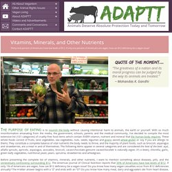 Vitamins, Minerals, and Other Nutrients << Vegan Living << ADAPTT