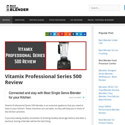 Vitamix Professional Series 500 Review