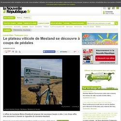 Le plateau viticole de Mesland se découvre à coups de pédales - 22/08/2015