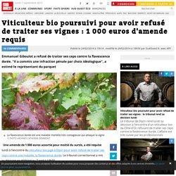 Viticulteur bio poursuivi pour avoir refusé de traiter ses vignes : 1 000 euros d'amende requis