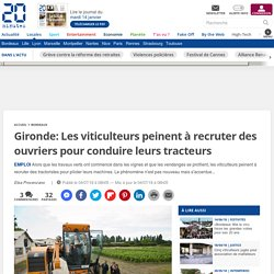 Gironde: Les viticulteurs peinent à recruter des ouvriers pour conduire leurs tracteurs