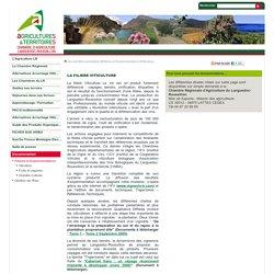Viticulture - Chambre Régionale d'agriculture Languedoc Roussillon