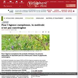 Viticulture / oenologie : Pour lAgence européenne, la molécule nest pas cancérogène