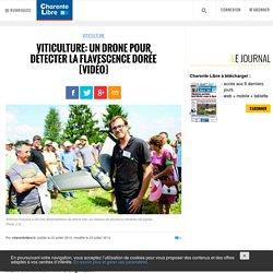 CHARENTE LIBRE 22/07/14 Viticulture: un drone pour détecter la flavescence dorée [vidéo]