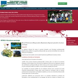 BPREA Viticulture-oenologie Formations Adultes CFPPA