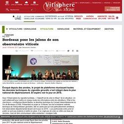 Viticulture / oenologie : Bordeaux pose les jalons de son observatoire viticole