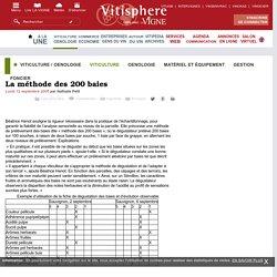 Viticulture / oenologie : La méthode des 200 baies