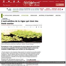 VITISPHERE 23/09/16 L'anti-mildiou de la vigne qui vient des fonds marins