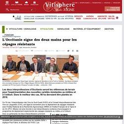 VITISPHERE 19/05/17 L'Occitanie signe des deux mains pour les cépages résistants (mildiou et oïdium)