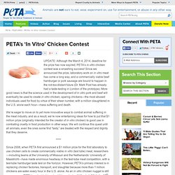 Offers $1 Million Reward to First to Make In Vitro Meat | PETA.org
