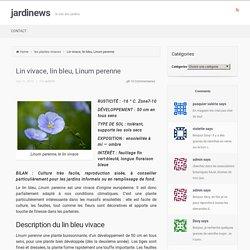 Lin vivace, lin bleu, Linum perenne - jardinews