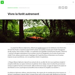 Vivre la forêt autrement - Vent des Forêts