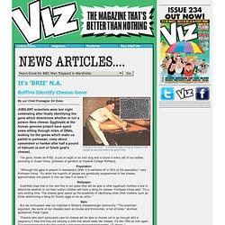 Viz Comic