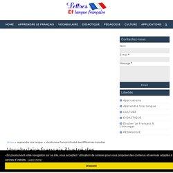 Vocabulaire français illustré des différentes maladies - Lettres et langue française