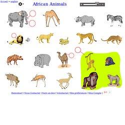 les animaux d'Afrique - anglais Vocabulaire