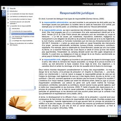 Historique, vocabulaire, perception - Responsabilité juridique