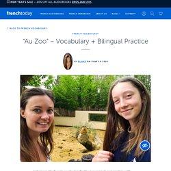"""Au Zoo"" – Vocabulary + Bilingual Practice"