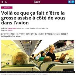 Voilà ce que ça fait d'être la grosse assise à côté de vous dans l'avion