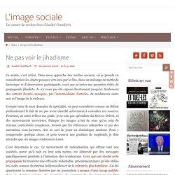 Ne pas voir le jihadisme – L'image sociale