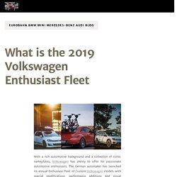 What is the 2019 Volkswagen Enthusiast Fleet