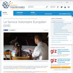 Service Volontaire Européen SVE, Volontariat européen, bénévolat Europe