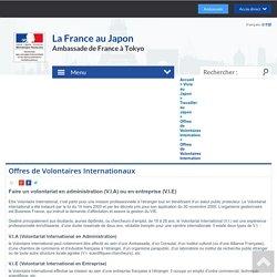 Offres de Volontaires Internationaux