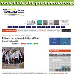 Palio dei caci volterrani - Volterra (Pisa) - Eventi in Toscana