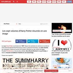 Les sept volumes d'Harry Potter résumés en une image