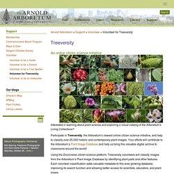 Treeversity: Online Citizen Science Initiative