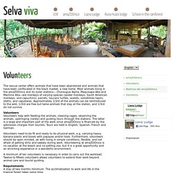 Volunteers ← Selva viva