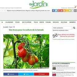 Vos trucs pour la culture de la tomate