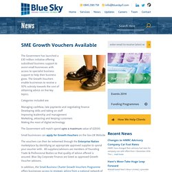 SME Growth Vouchers Available - Blue Sky Corporate Finance