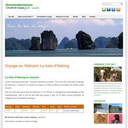 Voyage dans la baie d'Halong au Vietnam : météo, circuits et bons plans