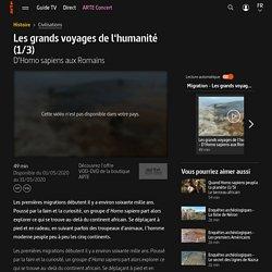 Les grands voyages de l'humanité (1/3) - D'Homo sapiens aux Romains