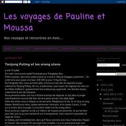 Les voyages de Pauline et Moussa: Tanjung Puting et les orang utans