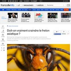 FRANCE TV INFO 09/03/14 Doit-on vraiment craindre le frelon asiatique ?