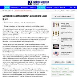 Serotonin Deficient Brains More Vulnerable to Social Stress