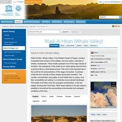 Wadi Al-Hitan (Whale Valley)