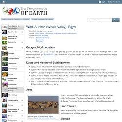 Wadi Al-Hitan (Whale Valley), Egypt