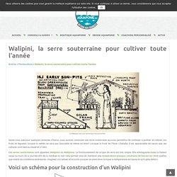 Walipini, la serre souterraine pour cultiver toute l'année - Aquaponie France