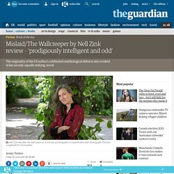 Mislaid/The Wallcreeper by Nell Zink review – 'prodigiously intelligent and odd'