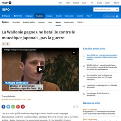 RTBF 09/02/16 La Wallonie gagne une bataille contre le moustique japonais, pas la guerre