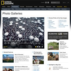 Photo Galleries, Photos, Pictures, Wallpapers, Photography - National Geographic