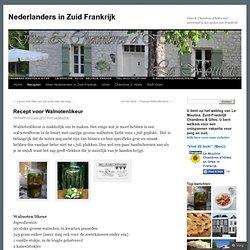 Nederlanders in Zuid Frankrijk