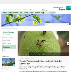 IVA_DE 11/12/12 Wo die Walnussfruchtfliege drin ist, hört der Genuss auf
